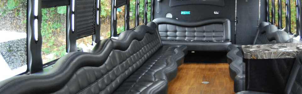 38 Pax Party Bus   Google Drive 960x300 c - Buster
