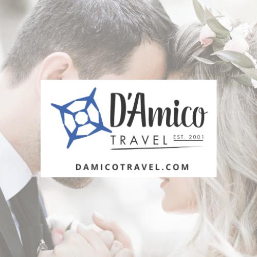 DAmico Travel Logo - Partners
